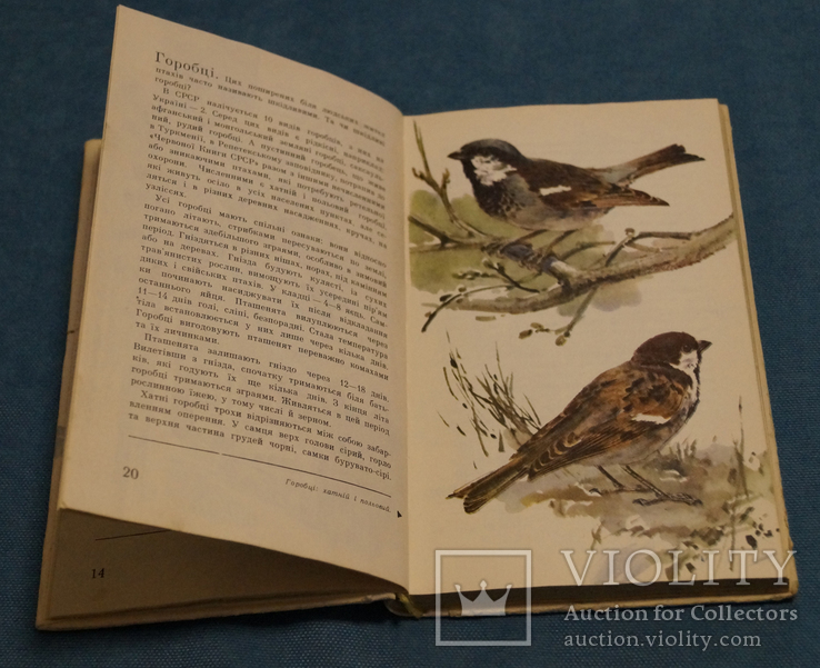 Комплект книг 10 шт., фото №5