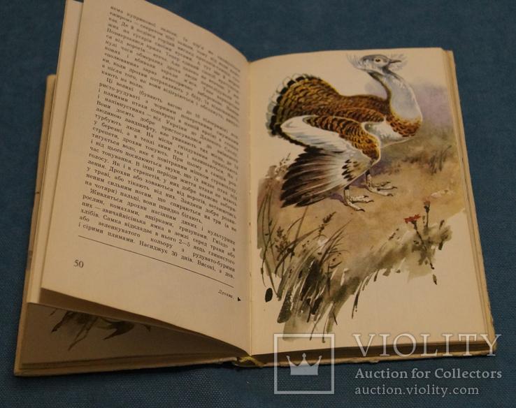Комплект книг 10 шт., фото №7