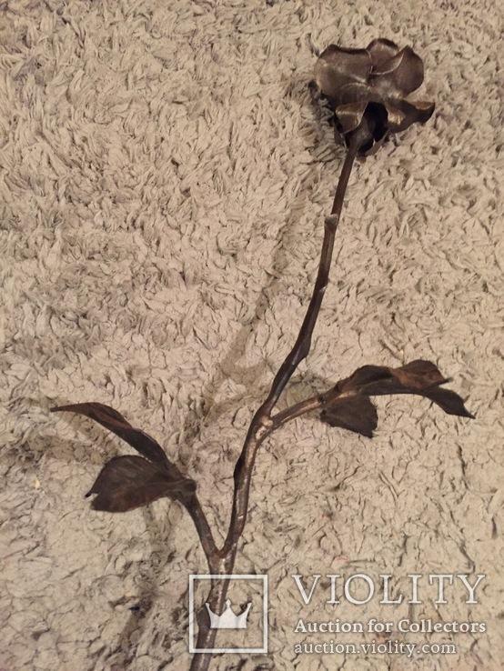 «Роза Мерцалова», фото №2
