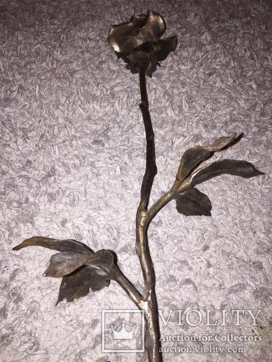«Роза Мерцалова», фото №5