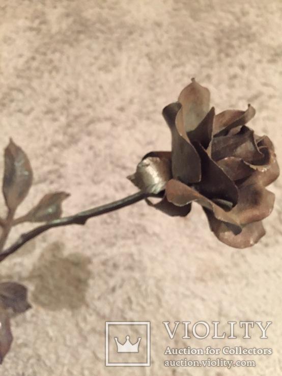 «Роза Мерцалова», фото №7