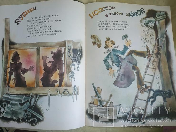 Енот и опоссум, фото №10