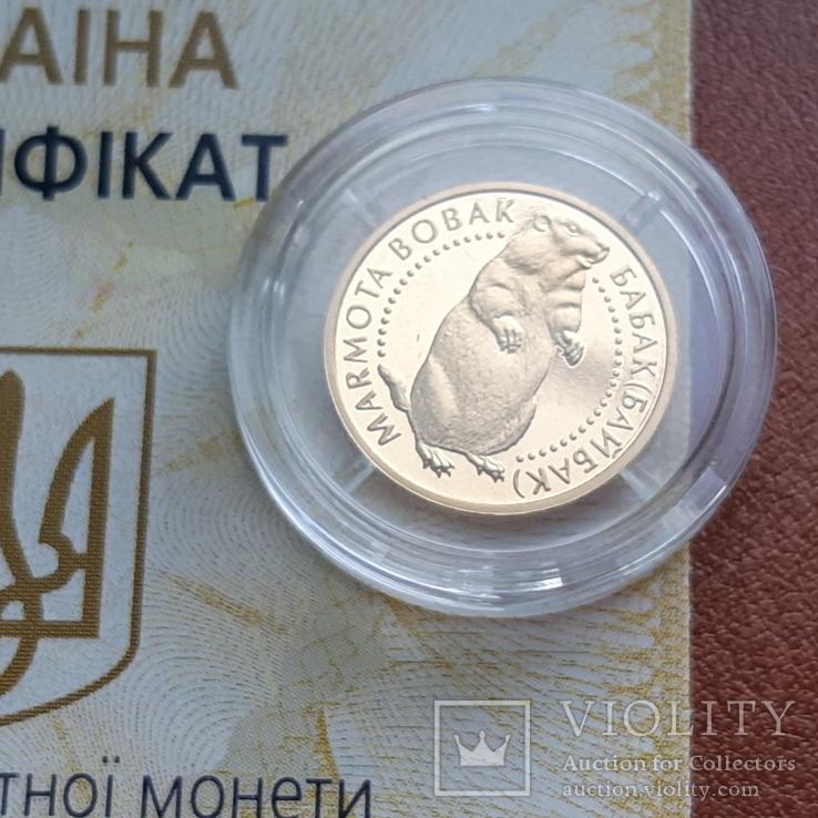 Золото 2 гривні 2007  Байбак, фото №6