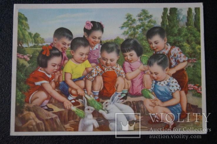 """Открытка.""""Кормление зайцев"""".(Чжан Да-синь) 1950 год.Китай., фото №5"""