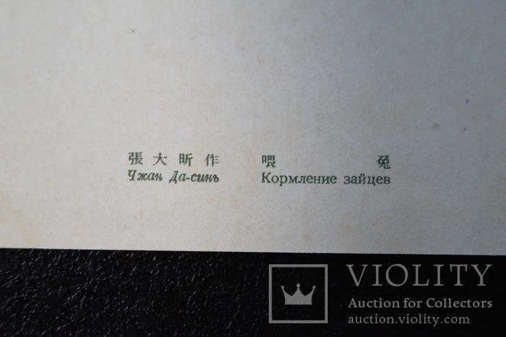 """Открытка.""""Кормление зайцев"""".(Чжан Да-синь) 1950 год.Китай., фото №11"""
