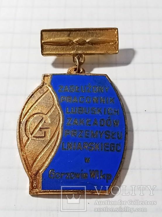 Заслуженный работник польша, фото №2