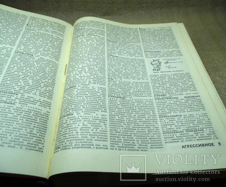 Биологический энциклопедический словарь 1989, фото №5