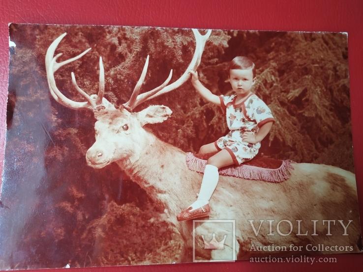 Ребенок на олене, фото №2