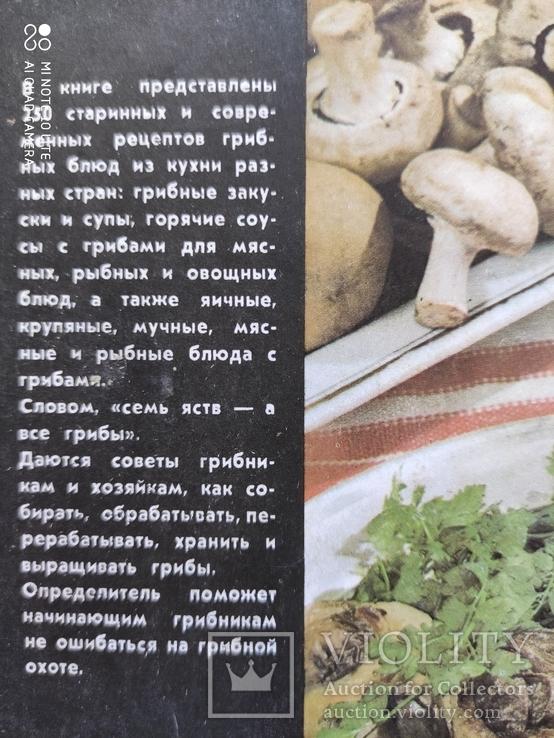 Грибы на вашем столе А.В. Ярош, фото №3