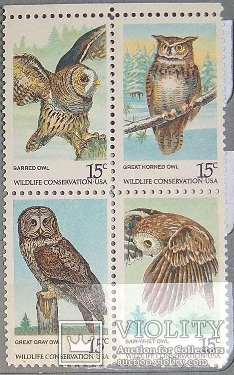 Фауна совы 1978 США