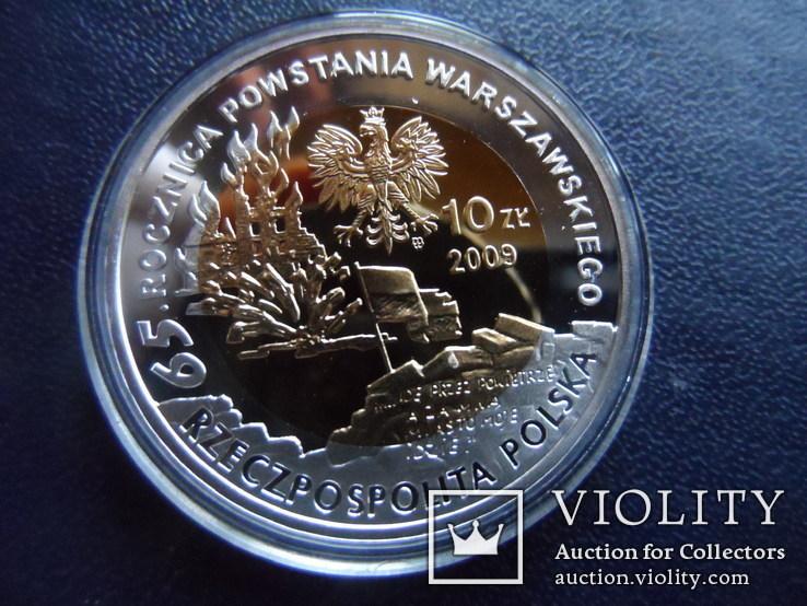 10 злотых 2009  Польша серебро  (3.5.4)~, фото №4
