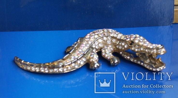 Змія. Крокодил, фото №4