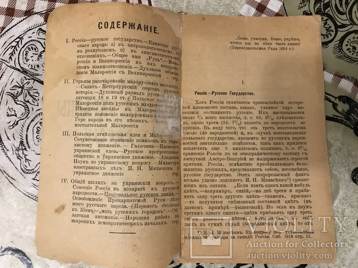 1917 Возможно ли отделение Украины от России, фото №3