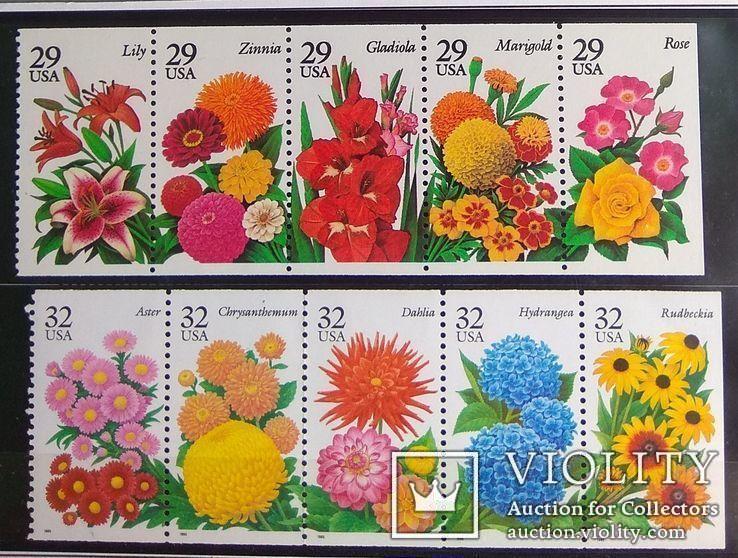 Цветы США 10 шт