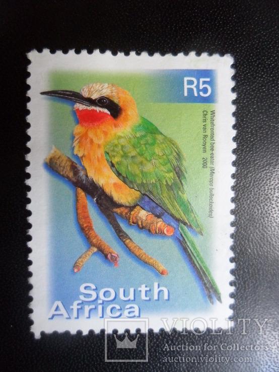 Фауна. Птицы. Южная Африка.  MNH, фото №2