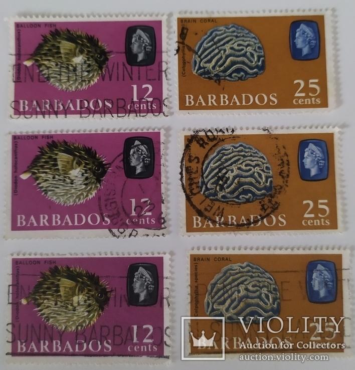 Марки Барбадоса 1965, фото №2