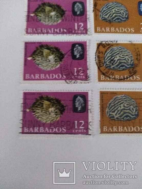Марки Барбадоса 1965, фото №4