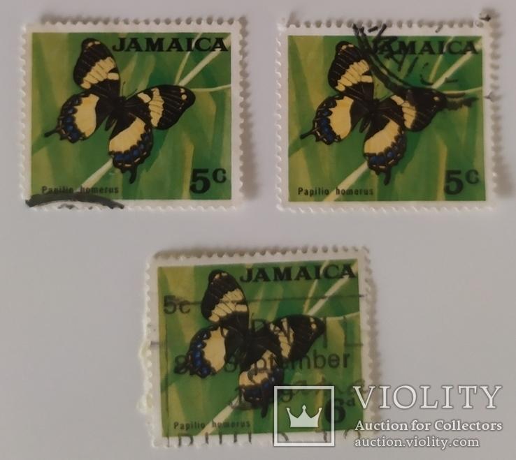 Марки Ямайки 1970 метелики, фото №2