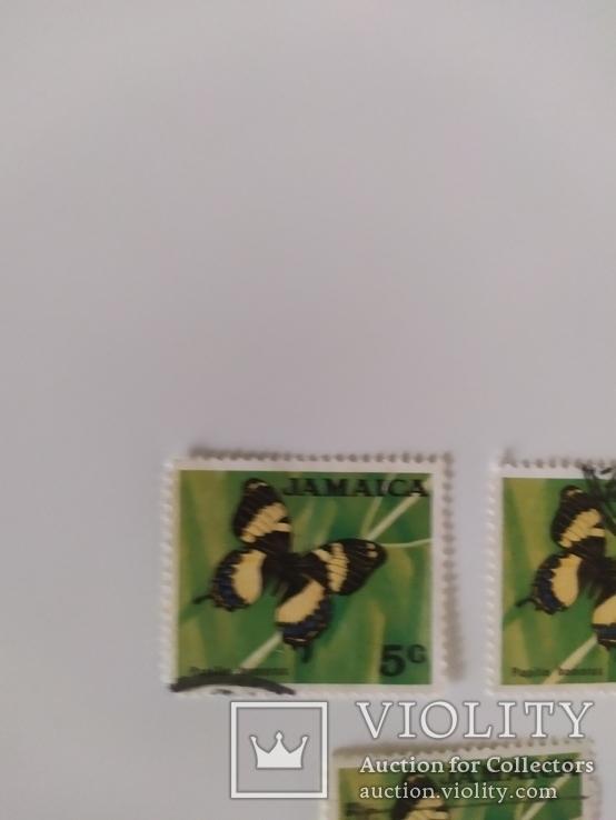 Марки Ямайки 1970 метелики, фото №4
