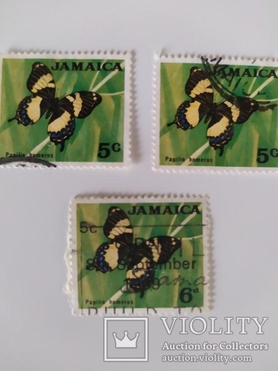 Марки Ямайки 1970 метелики, фото №5