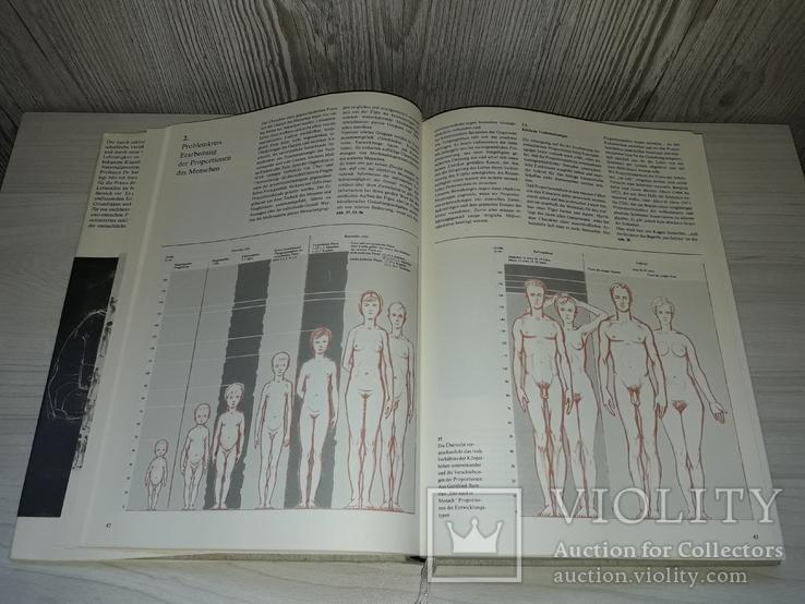 Готтфрід Баммес.Bammes Gottfried. Зображення фігури людини 1985, фото №6