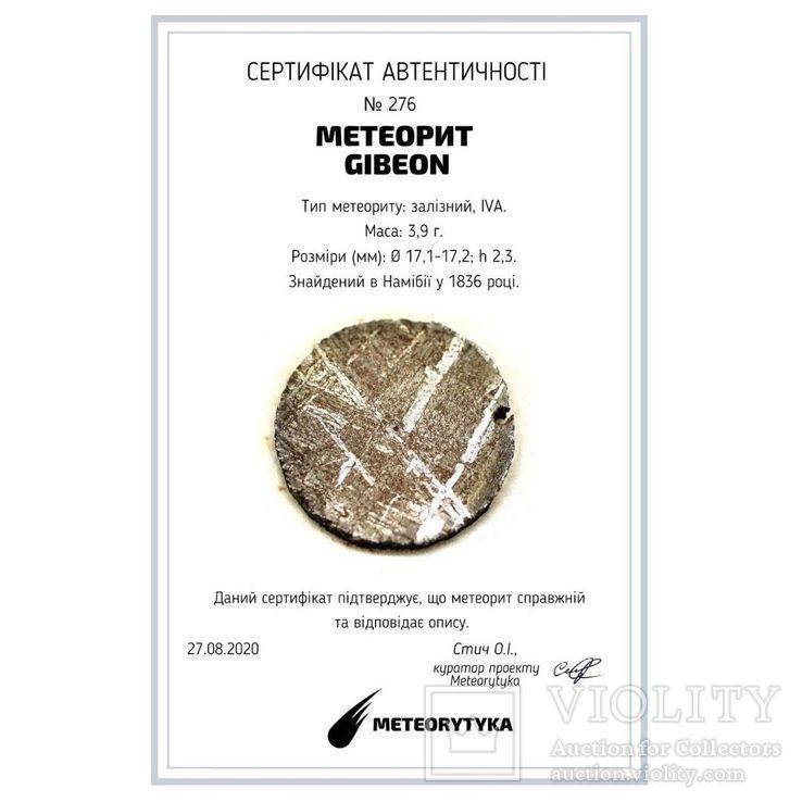 Залізний метеорит Gibeon 3,9 грам, з сертифікатом автентичності, фото №3