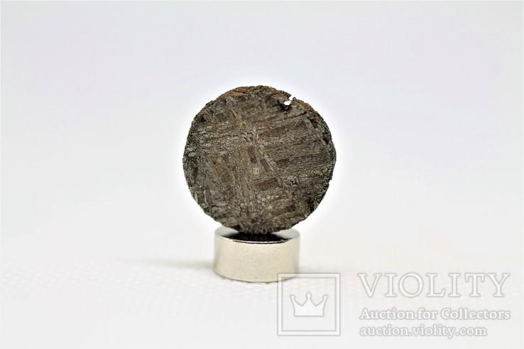 Залізний метеорит Gibeon 3,9 грам, з сертифікатом автентичності, фото №6