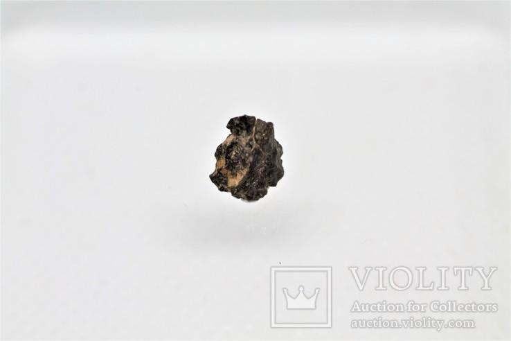 Залізо-кам'яний метеорит Vaca Muerta, 0,23 грам, із сертифікатом, фото №6