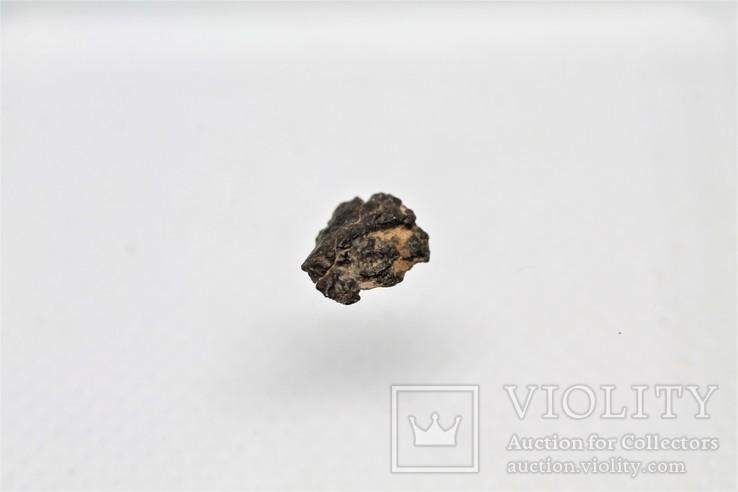Залізо-кам'яний метеорит Vaca Muerta, 0,23 грам, із сертифікатом, фото №8