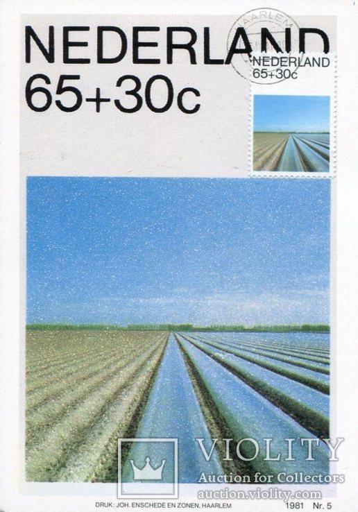 Открытки картмаксимумы Нидерланды природа пейзажи, фото №5