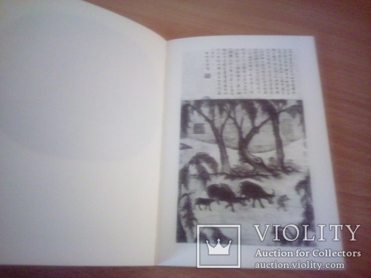 Sztuka chinska, изд, Arcady Warsaw 1978г, фото №10