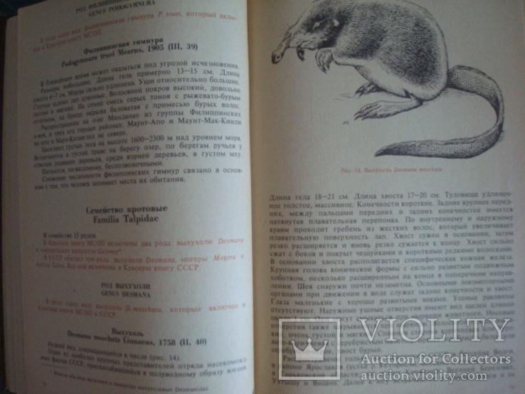 """""""Редкие и исчезающие животные"""" В.Соколов 1986г., фото №5"""