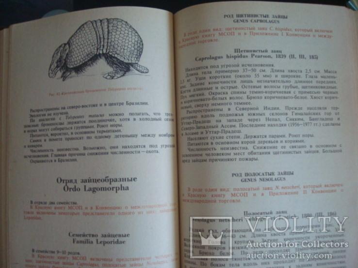 """""""Редкие и исчезающие животные"""" В.Соколов 1986г., фото №7"""