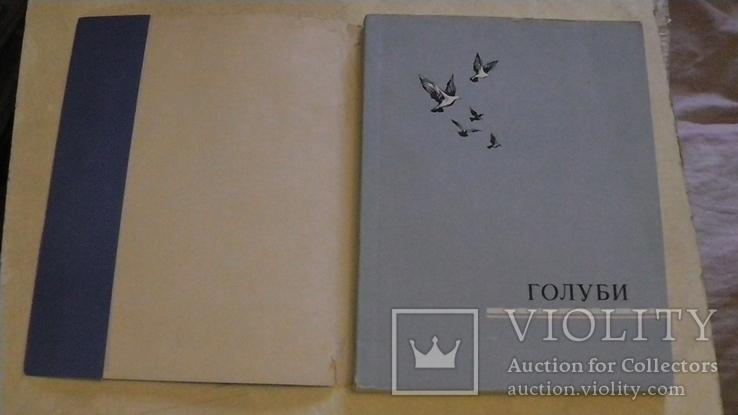Голуби. Сборник статей. 1958 г., фото №3