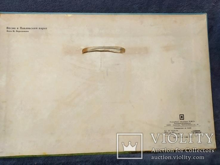 Репродукция картины на ткани Весна в Павловском парке 1982г.тираж 15 000., фото №3