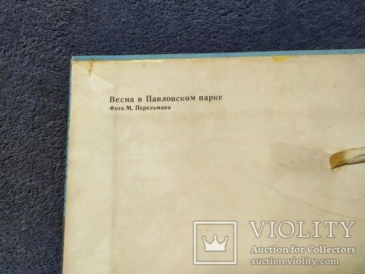 Репродукция картины на ткани Весна в Павловском парке 1982г.тираж 15 000., фото №5