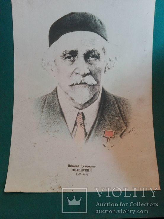 Школьные плакаты СССР биология Зелинский Зенин, фото №3