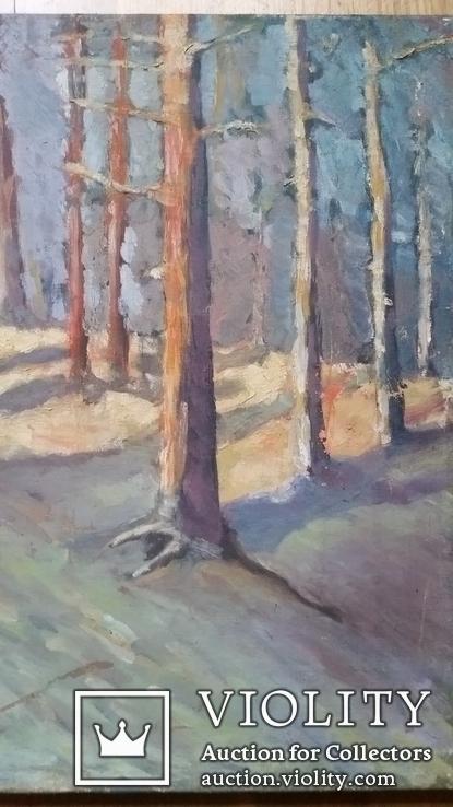 Картина 45х67,5 см, полотно, олія, фото №5