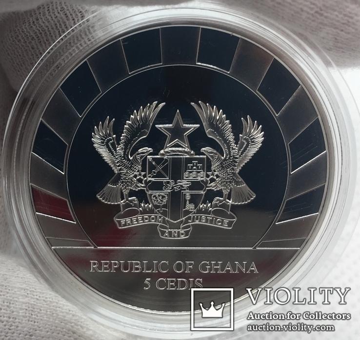 Мамонт 2019 Гиганты ледникового периода Ганы, фото №8