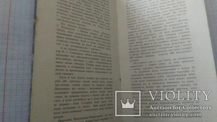 Владимир Волынский мемориальный комплекс., фото №5