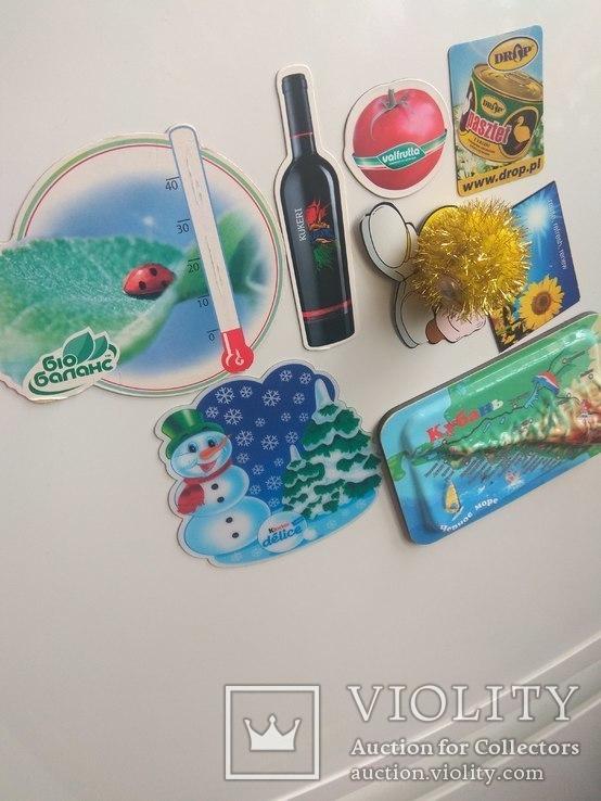 Магниты на холодильник., фото №8