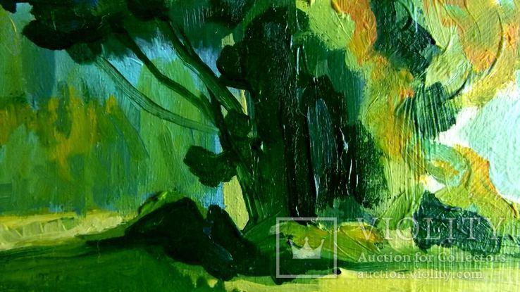 Амазонка, фото №4