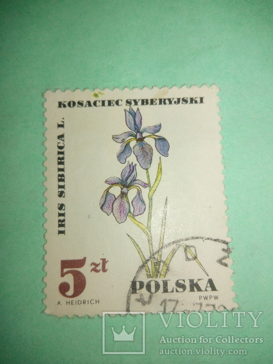 Марка Польская цветок