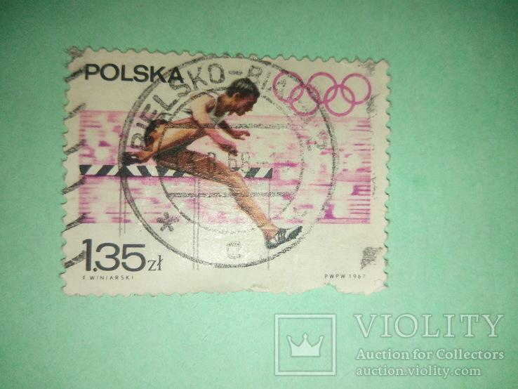 Польская марка спорт