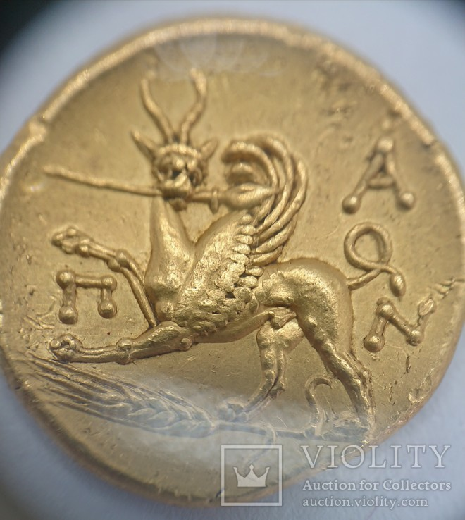 Золотой статер Пантикапей 314-304 год до н.э., Боспорское царство, фото №5