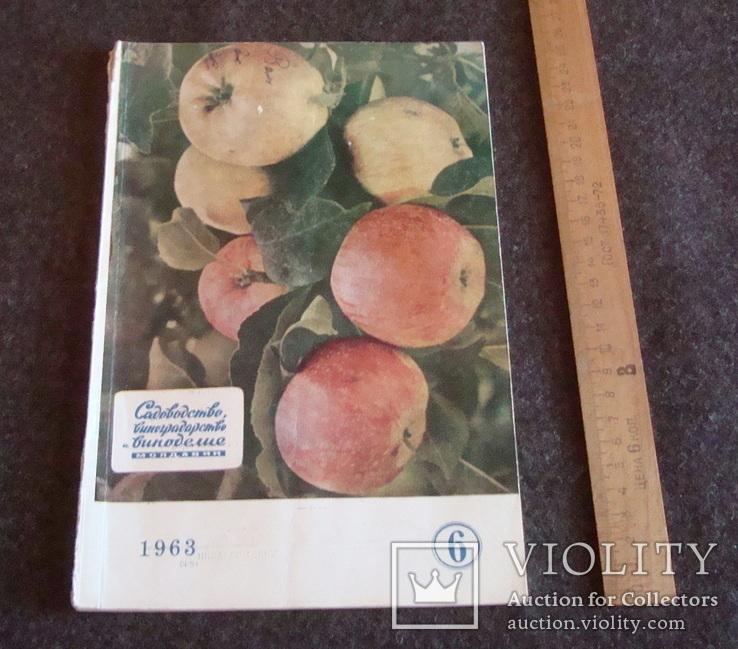 Садоводство, виноградарство и виноделие Молдавии 6/1963, фото №2