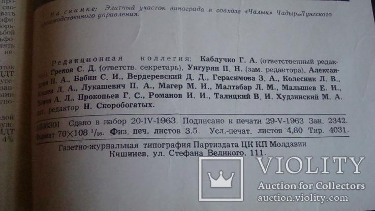 Садоводство, виноградарство и виноделие Молдавии 6/1963, фото №5