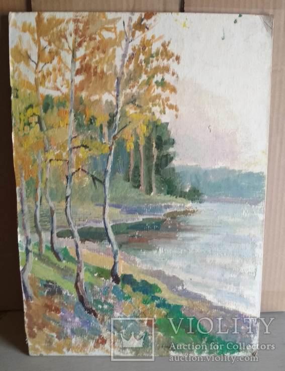 Необычная  двухстороння картина, масло, Дом и пейзаж, картон, 33,5х47см, художник неизв., фото №5