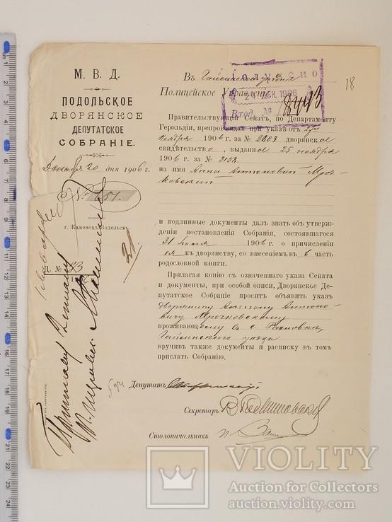 Документ. Каменец-Подольский. М.В.Д. 1906 г.