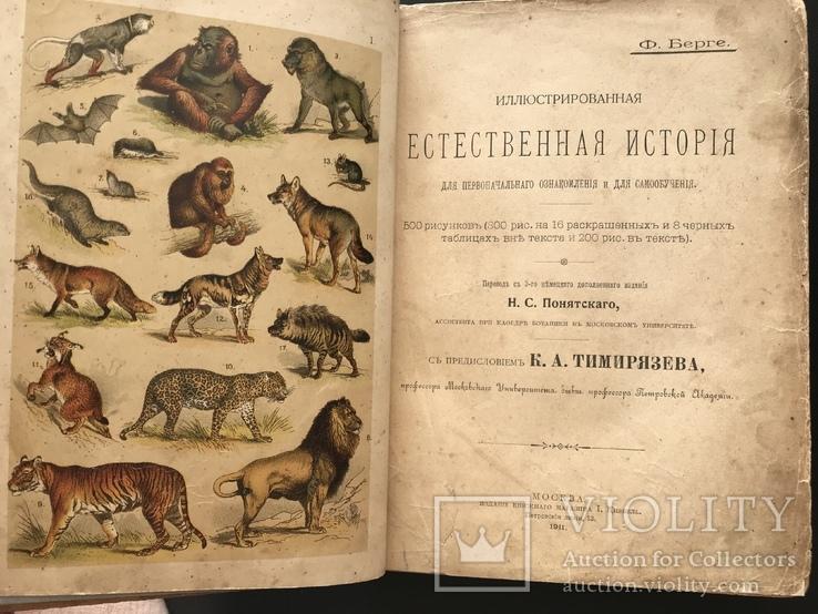 1911 Ф. Берге. Иллюстрированная Естественная история. Животные Растения Минералы